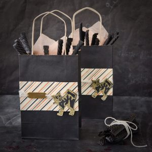 Scaredy Cat Gift Bags